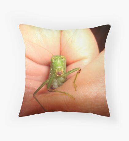 Safe in my hand...a katydid Throw Pillow