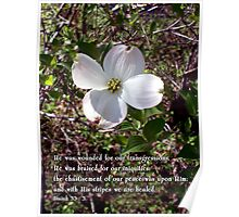 we are healed - - Easter dogwood Poster