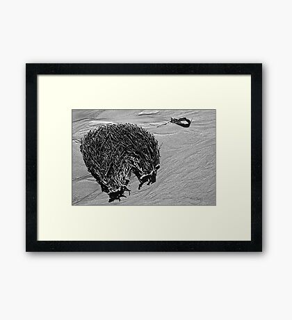 On the Beach #3 Framed Print