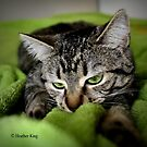 Fascination with Greenie by Heather King
