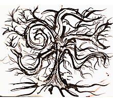 The Useless Tree Photographic Print