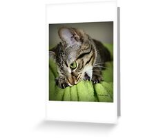 Irresistible Greeting Card