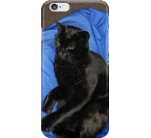 Puss-On-Blue iPhone Case/Skin