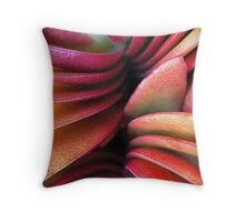 Solitude Slices Throw Pillow