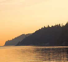 Whidbey Island by Micci Shannon