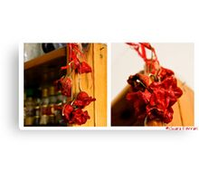 4-52 Spicy Canvas Print