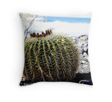 Do not sit over this...Echinocactus grusonii (cussin de la belle mère) Throw Pillow