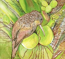Wood Creeper in Coconut Palm, Mexico by Lynda Earley