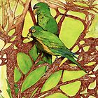 Orange-Fronted Parakeets, Casa Caprichito, Mexico by Lynda Earley
