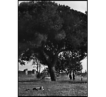 A family Photographic Print