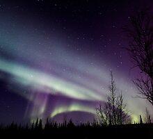 Aurora Borealis 2987 by May-Le Ng