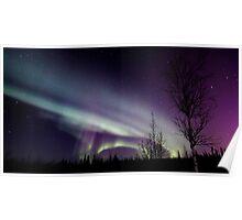 Aurora Borealis 2987 Poster