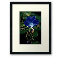 """""""Bluewhite Flame"""" Framed Print"""
