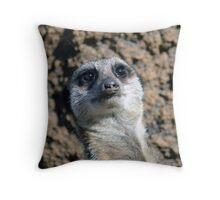 Amusing Meerkat Throw Pillow