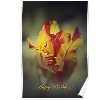 Happy Birthday card with Parrot Tulip Poster