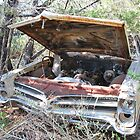 Old Car on the Hill by Cathy Jones