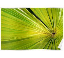 Leaf Art Poster