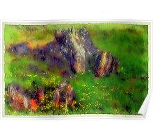 Wildflowers and Lichens Poster