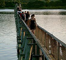A bridge so far.... by Roy  Massicks