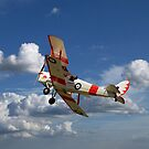 """""""Woody"""" Tiger Moth C-GMTH by jules572"""