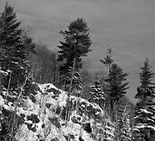 Snowy Ridge by GaryColvard