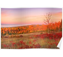 Sunrise On Wildflower Hill Poster