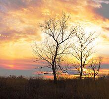 Sunset On The Prairie by GaryColvard