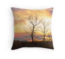 Sunset On The Prairie Throw Pillow