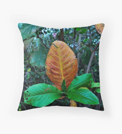 Mother Nature doodles #6 Throw Pillow