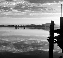 Stillness of Morning by Jennifer Saville