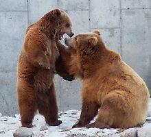 Bears Playtime by AnnDixon