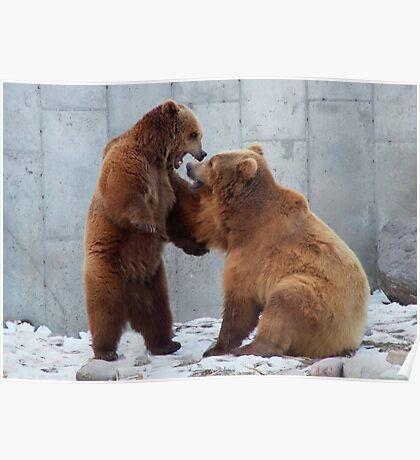 Bears Playtime Poster