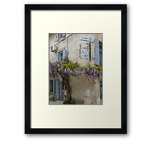 Flowering wisteria St Remy Provence Framed Print