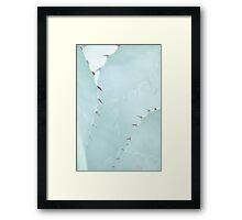 Gently thorn Framed Print