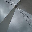 Apex of the Batman Bridge. by DEB CAMERON
