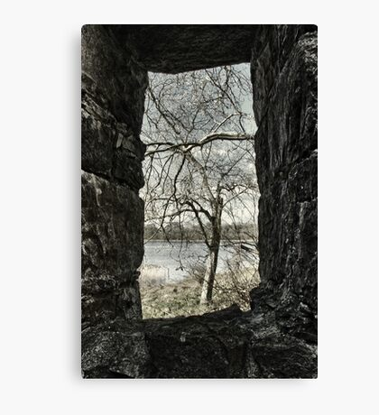 A View on the Lake Canvas Print
