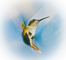 Hummingbird Angel by ksmdigiphoto