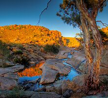 Australian Sunrise - Mannum Falls, Murray Valley, SA by Mark Richards