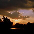 Morning Light by Dawn di Donato