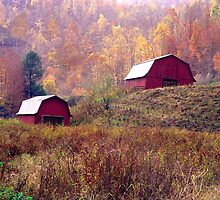 Twin Tobacco Barns by Annlynn Ward
