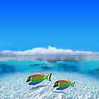Gay Fishes in Polynesia by Nasko .