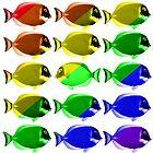 Gay fishes by Nasko .
