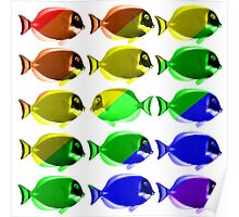 Gay fishes Poster