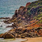 On the Rocks by Bette Devine