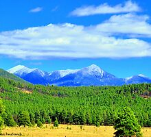 Flagstaff Arizona by Donna Anglin Husband
