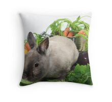 Rabbit with Vegetables Throw Pillow