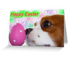 Happy Easter ~ Cavalier King Charles Spaniels Greeting Card