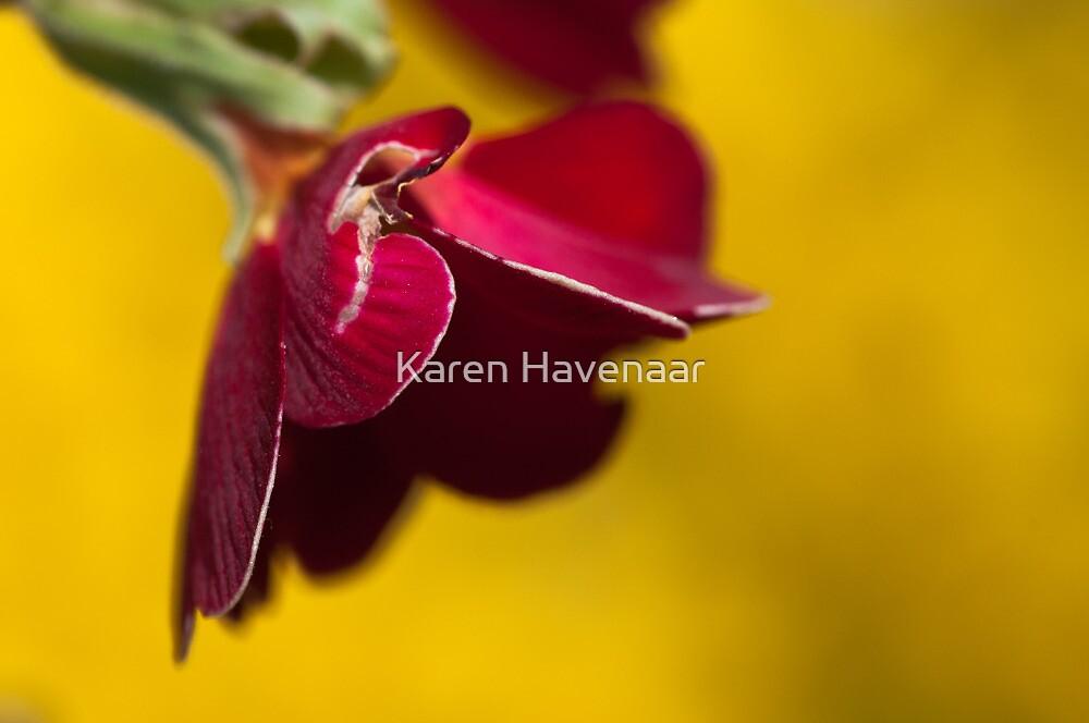 Damaged Red on Yellow by Karen Havenaar