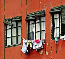 Three Windows by Mojca Savicki