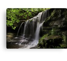 West Burton Canvas Print